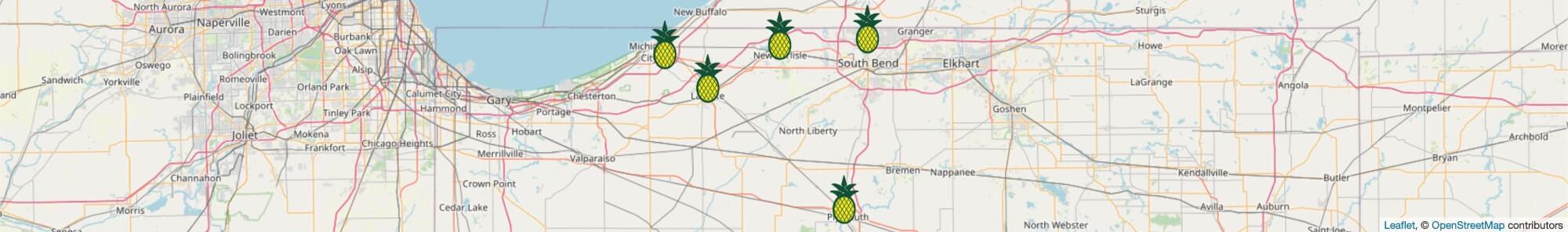 Locations of Michiana Insurance Desktop Map